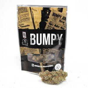 Buy bumpy backpackboyz online