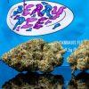 Buy Berry pie cookies strain
