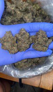 Buy Green crack cannabis online