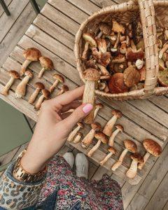 Buy Mushrooms for sale online
