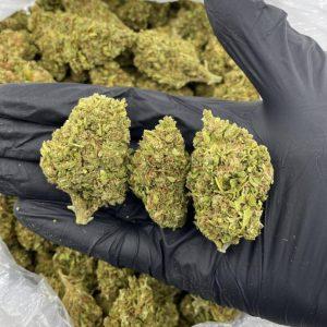 Buy Og Kush Marijuana online