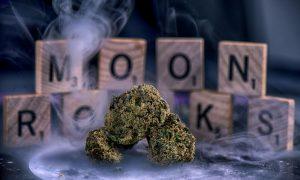 Buy purple moonrocks online